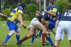 J8J10727 Haarlem-Amstelveen v Haarlemmermeer Hawks (KevinScott.Org) Tags: kevinscottorg kevinscott rugby rc rfc haarlemrfc amstelveenarc haarlemmermeerhawks 2018