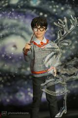 harry potter (photos4dreams) Tags: harrypotter mattel photos4dreams p4d photos4dreamz doll puppe barbie joannekrowling saga bücher buch book books hogwarts zauber zauberer magic magisch 16 figures figuren danielradcliffe