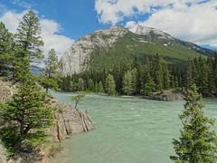 Banff National Park - Bow River (anjaherzog1) Tags: kanada canada banff nationalpark bowriver