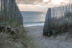 A way to the beach (Y-LG) Tags: 06000000 06006000 06006007 continentsetpays environnement europe fr fra france iptcnewscodes iptcsubjects laturballe lieux loireatlantique océans paysdelaloire ressourcesnaturelles environmentalissue naturalresources oceans