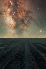 Night Monster (ibtihajtafheem) Tags: milkyway urbanmilkyway milkywayphotography milkywaychasers galaxy galacticcore blackhole stars star sky foreground field grass water monster nightmare night nightscape nightshooters nightscaping nightcolors nightphoto