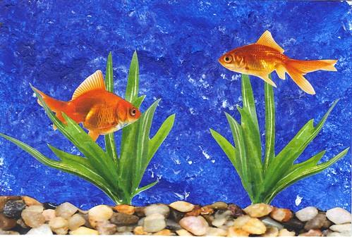 Goldfish pc
