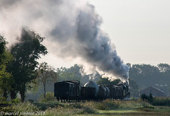VSM 50-0073, Loenen (cellique) Tags: vsm terugnaartoen tnt museumspoor stoomtrein loenen spoorwegen treinen eisenbahn zuge railway train dampfloc