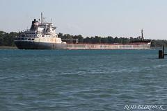 tsdool9218HI_rb (rburdick27) Tags: timsdool algoma algomacentral senneville freighter bulker