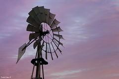 Molino de viento. (Orcoo) Tags: windmill molino atardecer cielo color colores colors clouds cloud nubes nube