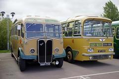 GAYDON 190818 HHP755 & AFJ86B 1 (SIMON A W BEESTON) Tags: gaydon busesfestival hhp755 afj86b aec regal reliance duple harrington cavailer maudsley greenslades