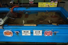 Sapporo fish market (Like_the_Grand_Canyon) Tags: fish fisch market markt japan japanese sapporo hokkaido asia asian