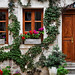 House in Kotor