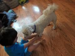 IMG_20180913_080244 (earthdog) Tags: 2018 needstags needstitle googlepixel pixel androidapp moblog cameraphone