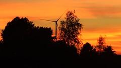 Sonnenuntergang 17.9 (kislat.karin) Tags: sonnenuntergang orange rot bäume windrad himmel