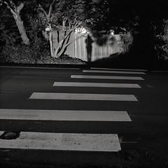 Portland (austin granger) Tags: self portland shadow crossing street lines fence square film gf670