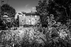 Abbaye de Combelongue (TchinChine !) Tags: abbayedecombelongue ariã¨ge france occitanie pays