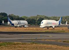 BelugaXL_Airbus_F-WBXL-001 (Ragnarok31) Tags: airbus a330 a330f fwbxl belga xl cargo a330743l