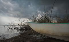 The end of Summer (luc.feliziani) Tags: trasimeno italia summer water lake clouds boat traditions umbria castiglione