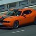 Sports Car : Dodge Challenger 392 HEMI