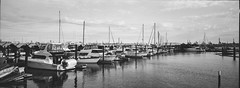 Boats - Film Hasselblad (Photo Alan) Tags: vancouver canada film filmcamera filmscan filmhasselblad hasselblad hasslbladxpan panoramic blackwhite blackandwhite monochrome water port boats boat marine cloud clouds ilford ilfordpan100 hc110 esponv800 espon