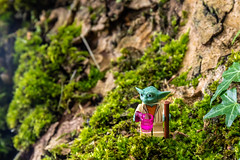 Monday morning in the forest (Ballou34) Tags: 2018 7dmark2 7dmarkii 7d2 7dii afol ballou34 canon canon7dmarkii canon7dii eos eos7dmarkii eos7d2 eos7dii flickr lego legographer legography minifigures photography stuckinplastic toy toyphotography toys stuck in plastic monday morning forest moss tree star wars yoda coffee cup maincy îledefrance france fr