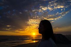 Cornado Sunset II (Michael Steverson) Tags: coronado beach sunset silhouette ocean pacific bird sand san diego california bay