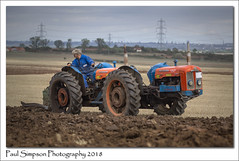 Fordson Super Major Tractor (Paul Simpson Photography) Tags: paulsimpsonphotography imagesof farming imageof photoof photosof festivaloftheplough northlincolnshire soya77 fordson tractor machinery ploughing plough competition vehicle transport transportation working workingfarm ploughingmatch september2018
