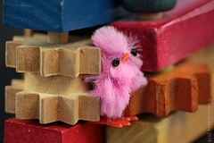 HELP! (Anne-Miek Bibbe) Tags: macromondays cogwheel tandrad zahnrad ratsche ratelmuziekinstrument ratel ratchetinstrument ratchet happymacromonday canoneos700d canoneosrebelt5idslr annemiekbibbe bibbe nederland 2018 speelgoed toy spielzeug giocattoli juguetes bringuedos jouets vintagetoys hout