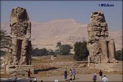 Los colosos de Memnon (mariadoloresacero) Tags: side river west velley kings louxor egypt egypte egipto vallée des rois valle reyes luxor rive occidentale ribera occidental tebas statues coloses colosos memnon