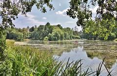 Park Schönbusch on a hot Summer Day (Hugo von Schreck) Tags: mainaschaff bayern deutschland hugovonschreck germany europe bavaria parkschönbusch canoneos5dsr tamron28300mmf3563divcpzda010