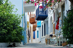 Streets of Mandraki (Lense23) Tags: greece griechenland street balcony balkon gasse island insel ägäis mediterraneansea colorful farbenfroh architektur architecture