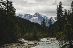 Canadian rockies (photographybyjoss ↟↟) Tags: canadianrockies rockymountains rockies canada banffnationalpark mountains trees nature landscape landschaft outside