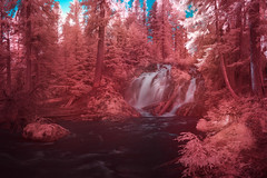 Invisible light falls (Ben_Coffman) Tags: pacificnorthwest bencoffman bencoffmanphotography infrared infraredlandscape infraredlongexposure longexposure oregon waterfall