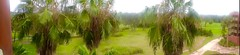 Savannah (moacirdsp) Tags: savannah disneys animal kingdom villas jambo house resorts walt disney world florida usa 2018