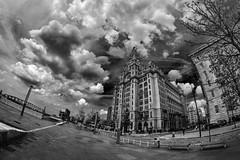 The Liver Bulidings (8mm & Other Stuff) Tags: liverpool england fisheye monochrome theliverbuildings canon 8mm samyang