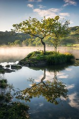 Rydal Water (John Ormerod) Tags: rydal water rydalwater lake lakedistrict tree light morning mist sun sky scenic reflections countryside england britain walk colour color autumn autumnal fall season weather photograph photography nikon camera d800 leefilters