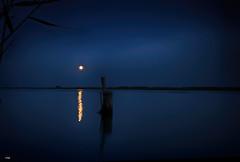 Y llegó la Luna (candi...) Tags: luna noche río ebro deltadelebro reflejo naturaleza nature cielo nubes sonya77 agua