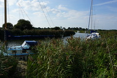 Memories on the Frome (mark1830) Tags: river reeds wareham moorings plank walk boats ridge frome sky