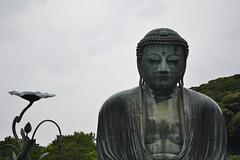 Daibutsu (andeapuane) Tags: japan nippon giappone buddha kotokuin kamakura statue