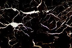 Vitraux végétaux....le guerrier à cheval dans la tempete-1 (FLOCVROFF) Tags: vegetal abstrait chivaroff macro 50mm contraste paint