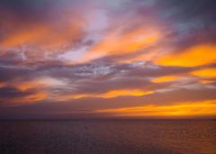 P1100566 (angelina.solberg) Tags: crimea sea travel sun sunset dawn dusk moon night pastel clouds seagulls