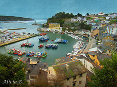 Luarca (Alicia B,) Tags: asturias españa europa europe spain sea puerto port luarca mar