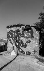20180813_A_019_JPEG FULL (Domenico Cichetti) Tags: bw bn blackwhite blackandwhite analogicait analogico argentique selfdevelop selfdevelope kentmere100 studional olympusom2n monocrome