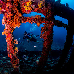 diver with rhone ribs (b.campbell65) Tags: britishvirginislands animal aquatic background blue boats caribbean coral deep diving dock fish island life marine nature ocean reef scuba sea ships travel tropical underwater vacation water
