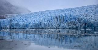 Glaciar Grey