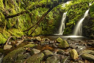 Vibrant Venford Falls
