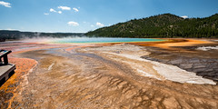 The Grand Prismatic of Yellowstone (Ron Drew) Tags: nikon d800 yellowstonenationalpark nationalpark yellowstone grandprismatichotspring hotspring wyoming usa summer microbialmat midwaygeyserbasin geyser watervapor 14mm wideangle park