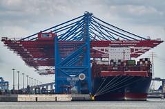 Hamburg, Hafen und Elbe (rainer.n.foto) Tags: rainern hafen schiff hamburg elbe