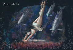 The Ocean stirs the heart, inspires the imagination and brings eternal joy to the soul.... (Neda Andel ~SLooK4U Blog) Tags: ocean deepsea dolphins quotes slook4u fameshed jian tetra dive mesh underwater