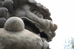 7 (HoHo_Chen) Tags: tamron taipei sonya7iii 2875mm nationalpalacemuseum tamron2875mm sony a7iii a7m3