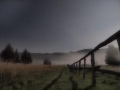 Ombre notturne (Fernando De March) Tags: notte ombre ombra luna cansiglio serata nebbia inversione termica