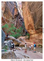 2D-TheNarrows-100 (stereo_eyz) Tags: zion nationalpark utah virginriver hiking canyon rock water narrows