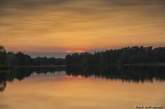 Golden Sunset (scottnj) Tags: 365the2018edition 3652018 day236365 24aug18 sunset lakehurst nj newjersey lakehoricon scottnj scottodonnellphotography reflection lake water oceancounty