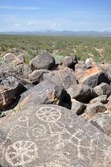 petroglyphs (markusOulehla) Tags: carnegieagigantea carnegiea arizona saguaronationalpark usa uswildlife markusoulehla oulehla nikon nikonnature nikond90 arizonalandscape saguaro cactus kaktus kakteen signalhill petroglyphs